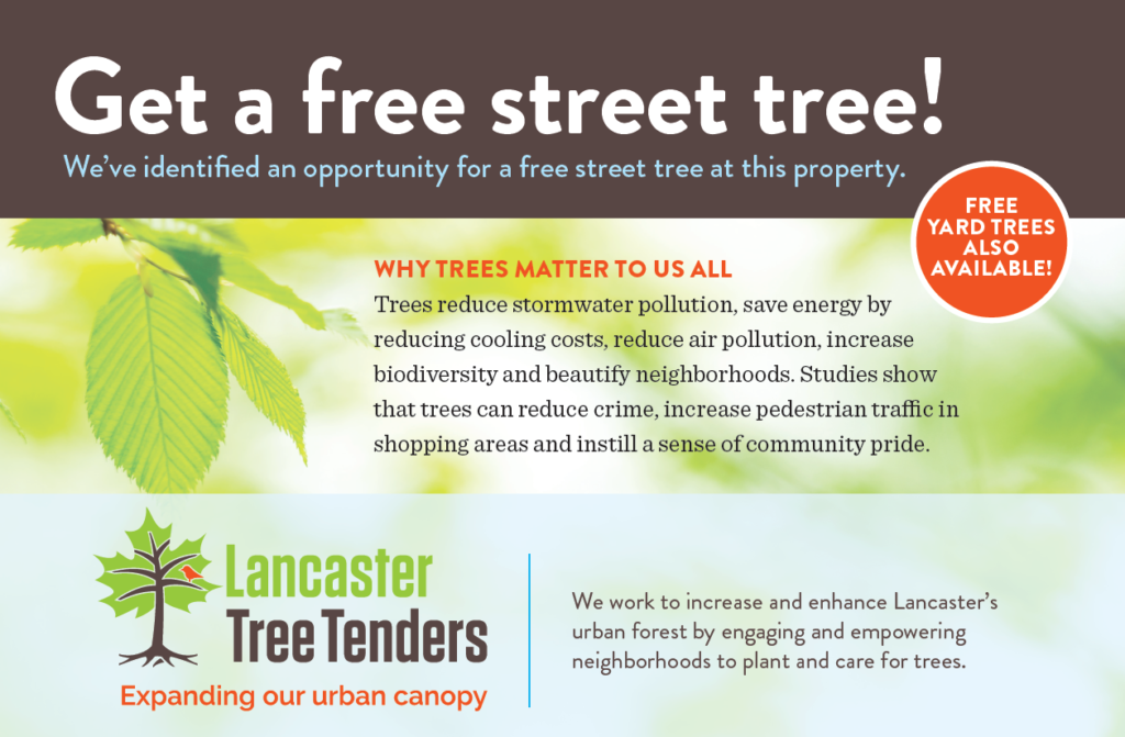 Free Trees for City Residents | Save It!